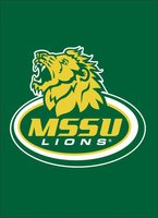 "MSSU Lions Silk Screened Banner 30""x40"""
